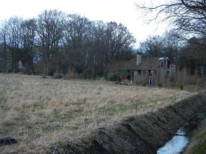Natuurlijk grasland bij het ecohuis van Buining (Aalden)